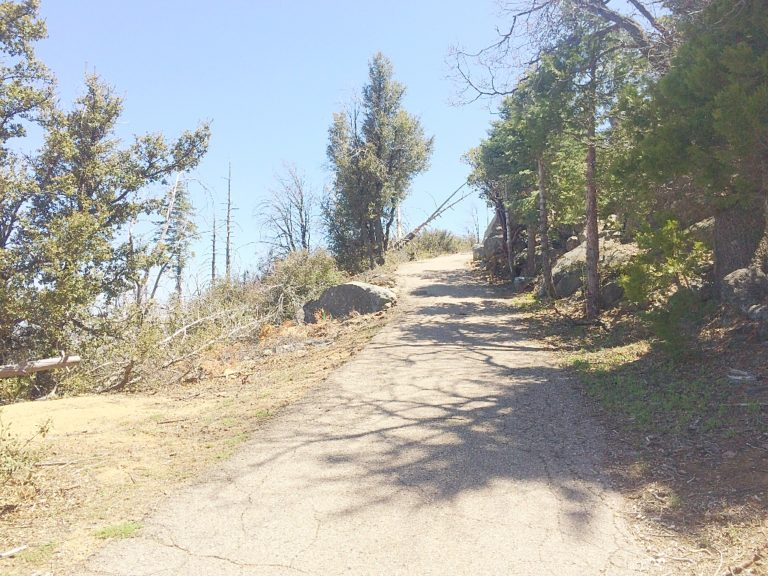 The steep, paved ascent to Cuyamaca Peak.