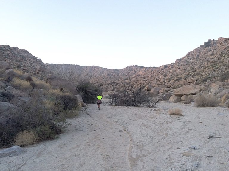 The course's first 5 miles are spent in Pinyon Wash.